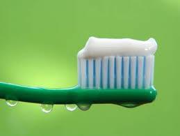 http://www.tiendanimal.es/pasta-dental-para-perros-p-2317.html
